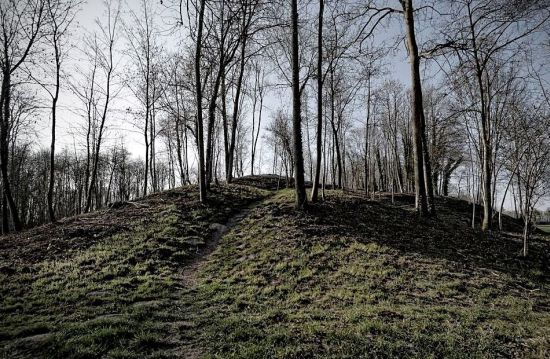 The Celtic castle mounds at la Cheppe