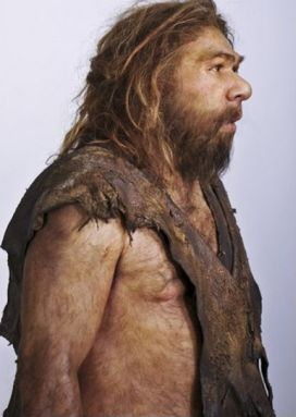 Reconstruction of  a neanderthal