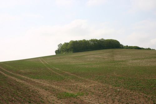 Hilltop near Ashingdon