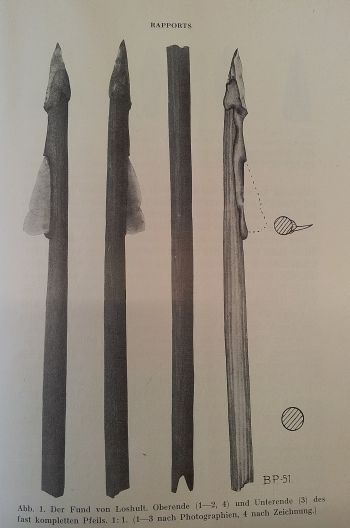 Two Maglemose arrows found in Lilla Loshults Mose in Scania