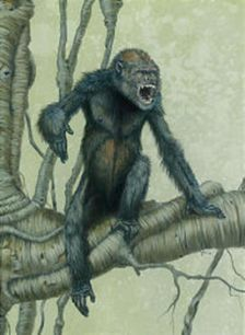 Reconstruction of Pierolapithecus Catalaunicus