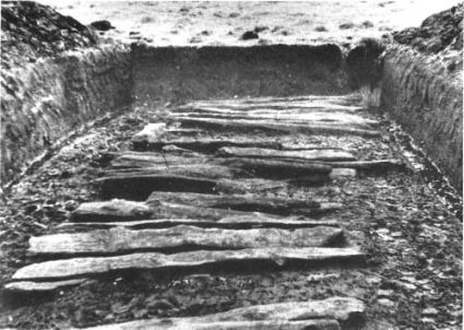 Plank road from late Bronze Age found in Skalså valley