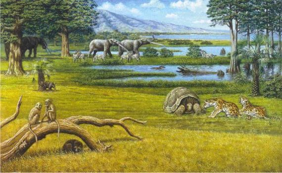 Reconstruction of Pliocene landscape