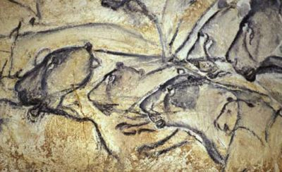Cave lion in the Chauvet cave in France