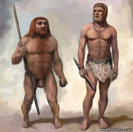 Typical  Neanderthal and typical modern man