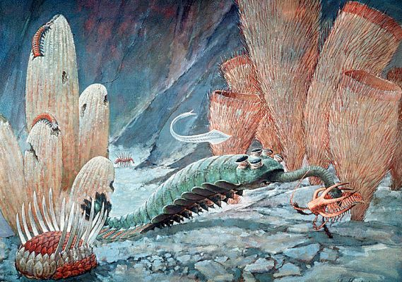 Reconstruction of life in the Cambrian