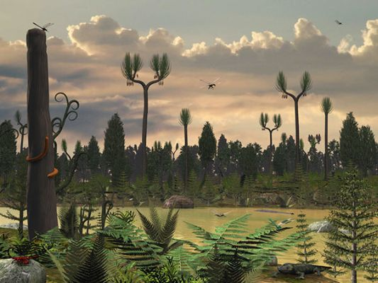 A Carboniferous landscape with ferns and tall Lycopod trees