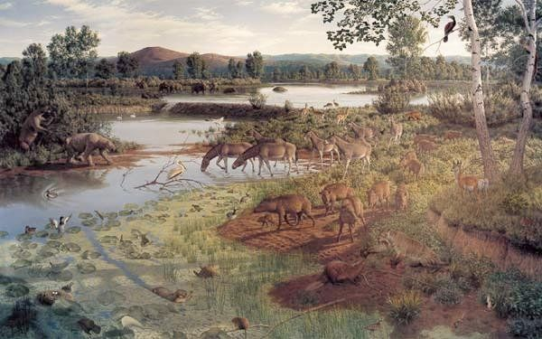 Artistic  reconstruction of a landscape from the Pliocene