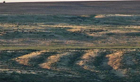 Giant wave pattern at Washtucna Coulee
