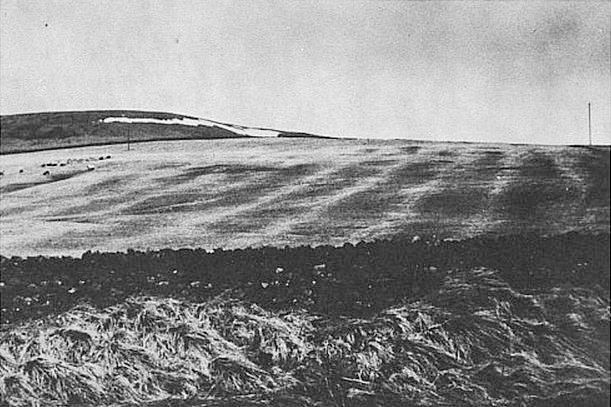 Visible traces of cultivated fields from the Middle Ages 300-320 meters above the sea at Redesdale in Northumberland