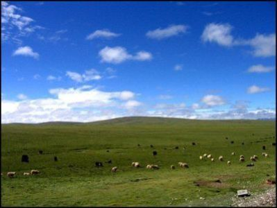 The high altitude plateau in Qinghai Province