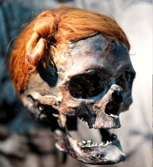 A decapitated head from the time of the Roman Empire found in a bog at Osterby in Germany