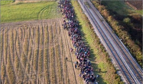 Migrants on march in Denmark in 2016