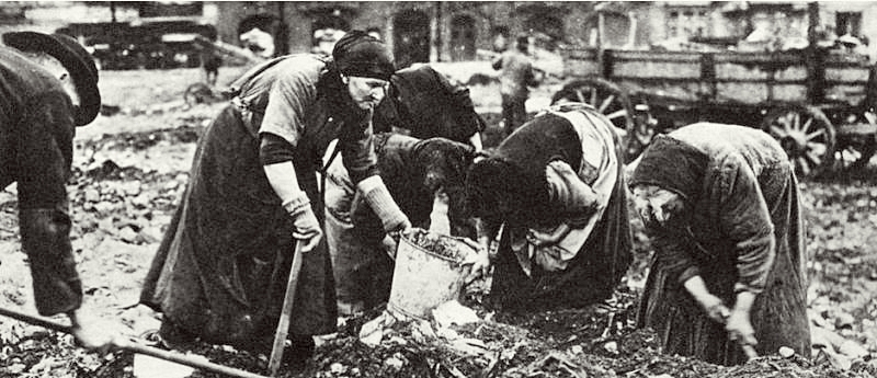 Berlin women are searching the waste to find something edible
