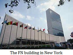 FN's building in New York